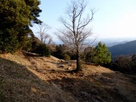 Photo6835