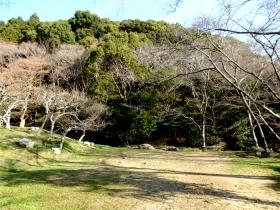 Photo6971